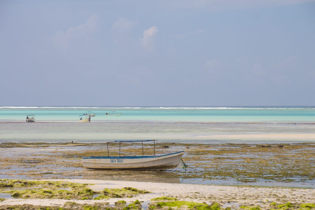 The Indian Ocean waters withdrew almost up to a kilometer during low tide - 10 reasons to visit Zanzibar.